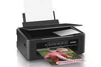 Epson Expression XP-241 - Multifunction printer - color
