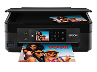 Epson XP-441 - Multifunction printer - Scanner / Printer / Copier